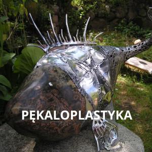 Pekaloplastyka